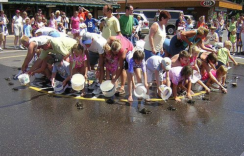 "Photo Credit: ""kids turtle race Nisswa Mn"" by Ken Ratcliff © 2006 (CC BY 2.0)"